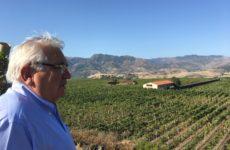 Il vino Etna Doc di Tornatore in vendita negli Usa dal 2018