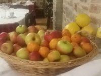 """La mela rosa dei Sibillini """"non piace"""" alla Rai . Produttori indignati e delusi"""