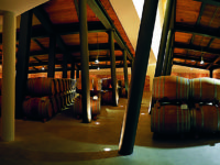I Masters of Wine sbarcano ad Osimo dal 2 marzo, al corso aspiranti da Russia e Giappone