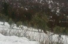 Piogge e nevicate in arrivo sulle Marche. Temperature in calo