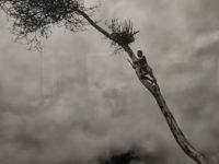 Salvate il pianeta Terra ! Emozionante mostra di Salgado ad Ancona