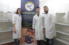 Ricercatori Camerino vincono la sfida. Raccolti 98% fondi per insetticida naturale contro zanzare killer, mercato mondiale