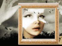 """I sensi oltre il limite. A Montegiorgio mostra """"al buio"""" delle opere di Venturelli"""