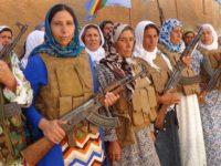 Quindicimila ulivi per dare un futuro ai curdi di Kobane. A Fano un progetto di rinascita sociale