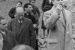 Eccidio nazifascista di Braccano. Domenica commemorazione e convegno