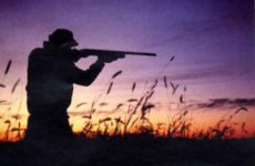 Tar Marche sospende la preapertura della caccia al 1 settembre. Smacco alla Regione