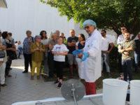 La Casciotta Dop di Urbino e la Pera Angelica fanno il pieno di visitatori
