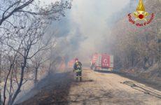 Ancora un incendio boschivo a Cupra Marittima