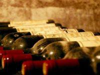"""Il mondo del vino si rinnova. A Montefano il """"Simposio della Sostenibilità"""""""