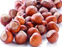 Gruppo Ferrero rilancia la produzione di nocciole nelle Marche