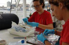 Un futuro migliore senza la plastica. Convegno venerdi a San Benedetto