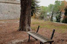 """Italia Nostra : """"Fortezza Pia di Ascoli abbandonata e pericolosa. Subito un progetto di recupero"""""""