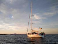 """""""Difendiamo il mare"""", Greenpeace issa le vele con i ricercatori Univpm"""