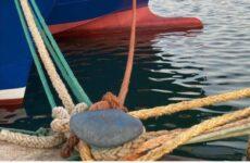 Dai rifiuti della pesca nuova vita per l'agricoltura