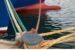 """""""Il nostro mare. Storie e progetti per il futuro"""". Incontro a San Benedetto il 12 luglio"""