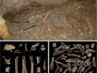 Frasassi, una Grotta era frequentata già 16 mila anni fa
