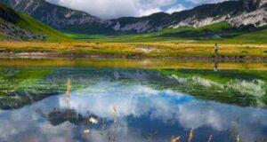 Gran Sasso e Monti della Laga, tutta la flora in una guida fotografica