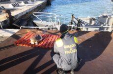 Tartaruga esanime recuperata al porto di Ancona