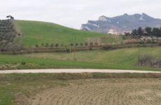 Agricoltura : da Regione Marche 9,9 milioni per strade interpoderali