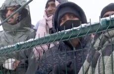 Il dramma dei migranti sulla Rotta Balcanica : incontro a Pesaro