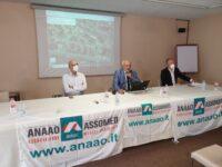 Ospedale di Osimo : Anaao Marche chiede soluzioni rapide