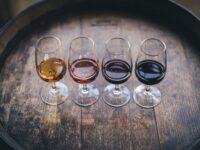Decanter Wine Awards, il Piceno sugli allori