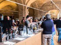 Ancona, al via Tipicità in Blu : mare, cibo, sport e cultura