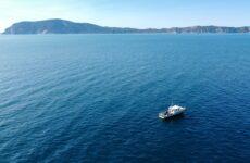 Ancona centro internazionale per la ricerca dei contaminanti marini