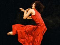 Pesaro teatro, ecco gli spettacoli di prosa e danza