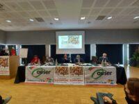 Auser Marche a congresso : Marcucci confermato presidente